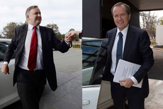 albanese-and-shorten-custom-data