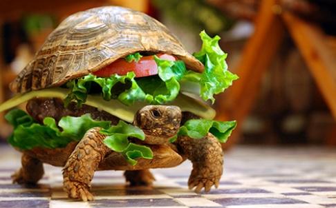 turtle-burger-l